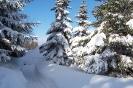 Altenber_Winter_10