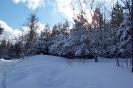 Altenber_Winter_9